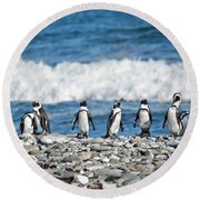 Line Of Pingouins Round Beach Towel by Delphimages Photo Creations