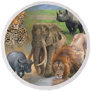 Africa's Big Five Round Beach Towel by David Stribbling