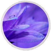 After The Rain Round Beach Towel by Krissy Katsimbras