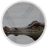 Alligator Eyes Round Beach Towel by Dan Sproul