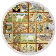 Alphabetical Animals Round Beach Towel by Ditz