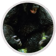 Angry Mountain Gorilla Round Beach Towel by Art Wolfe