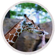Animal - Giraffe - Sticking Out The Tounge Round Beach Towel by Paul Ward
