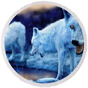 Arctic White Wolves Round Beach Towel by Mal Bray