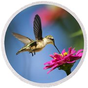 Art Of Hummingbird Flight Round Beach Towel by Christina Rollo