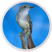 Ash-throated Flycatcher Round Beach Towel by Anthony Mercieca