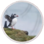Atlantic Puffins Fratercula Arctica Round Beach Towel by Panoramic Images