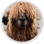 Bad Hair Day Round Beach Towel by James Brunker