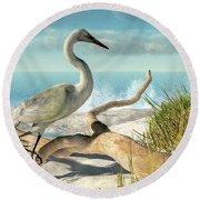 Beach Egret Round Beach Towel by Daniel Eskridge