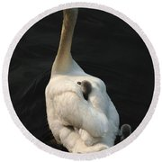 Birds Of A Feather Stick Together Round Beach Towel by Bob Christopher
