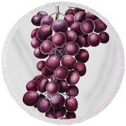 Black Grapes Round Beach Towel by Sally Crosthwaite