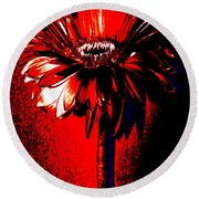 Bloody Mary Zinnia Round Beach Towel by Sherry Allen