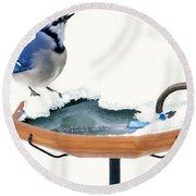 Blue Jay At Heated Birdbath Round Beach Towel by Steve and Dave Maslowski