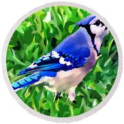 Blue Jay Round Beach Towel by Stephen Younts