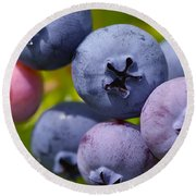 Blueberries Round Beach Towel by Sharon Talson