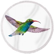 Broad Billed Hummingbird Round Beach Towel by Amy Kirkpatrick