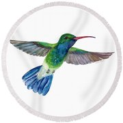 Broadbilled Fan Tail Hummingbird Round Beach Towel by Amy Kirkpatrick