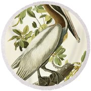 Brown Pelican Round Beach Towel by John James Audubon