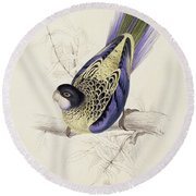 Browns Parakeet Round Beach Towel by Edward Lear
