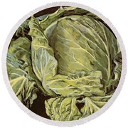 Cabbage Still Life Round Beach Towel by Vincent Yorke