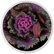 Cabbage With Butterfly Nebula Round Beach Towel by Panoramic Images