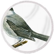 Canada Jay Round Beach Towel by Anonymous