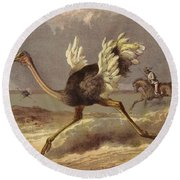 Chasing The Ostrich Round Beach Towel by English School