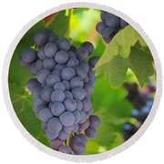 Chelan Blue Grapes Round Beach Towel by Inge Johnsson