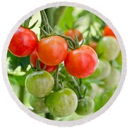 Cherry Tomatoes Round Beach Towel by Delphimages Photo Creations
