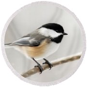 Chickadee Round Beach Towel by Christina Rollo