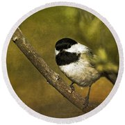 Chickadee Round Beach Towel by Cindi Ressler