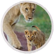 Close-up Of A Lioness And Her Cub Round Beach Towel by Panoramic Images