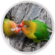 Close-up Of A Pair Of Lovebirds, Ndutu Round Beach Towel by Panoramic Images