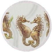 Close-up Of Sea Horses Round Beach Towel by English School