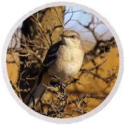 Common Mockingbird Round Beach Towel by Robert Frederick