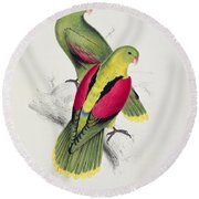 Crimson Winged Parakeet Round Beach Towel by Edward Lear