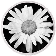Dew Drop Daisy Round Beach Towel by Adam Romanowicz