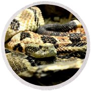 Eastern Diamondback Rattlesnake Round Beach Towel by Deena Stoddard