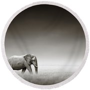 Elephant With Zebra Round Beach Towel by Johan Swanepoel