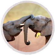 Elephants Touching Each Other Round Beach Towel by Johan Swanepoel