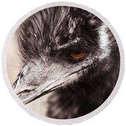 Emu Closeup Round Beach Towel by Karol Livote