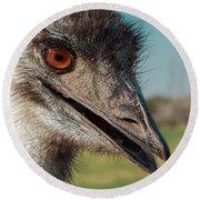 Emu Closeup  Round Beach Towel by Robert Frederick