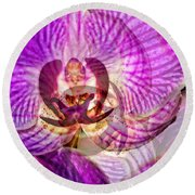 Ethereal Orchid By Sharon Cummings Round Beach Towel by Sharon Cummings