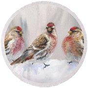Snowy Birds - Eyeing The Feeder 2 Alaskan Redpolls In Winter Scene Round Beach Towel by Karen Whitworth