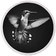 Fantail Hummingbird Round Beach Towel by Christina Rollo