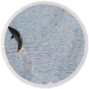 Fighting Chinook Salmon Round Beach Towel by Mike  Dawson
