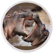 Fighting Hippos Round Beach Towel by Richard Garvey-Williams