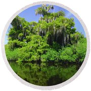 Florida Swamps Round Beach Towel by Carey Chen