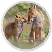 Fox Felicity - Mother And Fox Kit Showing Love And Affection Round Beach Towel by Roeselien Raimond