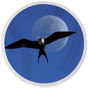 Frigatebird Moon Round Beach Towel by Jerry McElroy